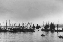 Peel Bay (II)