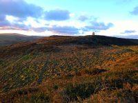 Corrin's tower, by Lynn Chambers