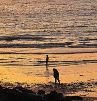 Seaside Stroll (Fenella), by Tony Faragher