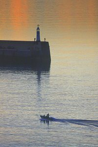 summer silhouettes, by Tony Faragher